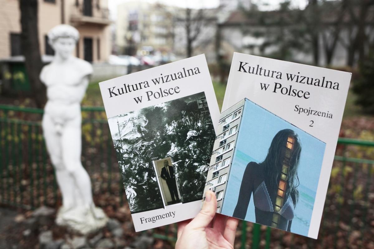 Kultura wizualna wPolsce – urywki iwidoki, pola wiedzy